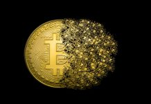 Nearly a Third of All Bitcoin Tokens Considered Lost