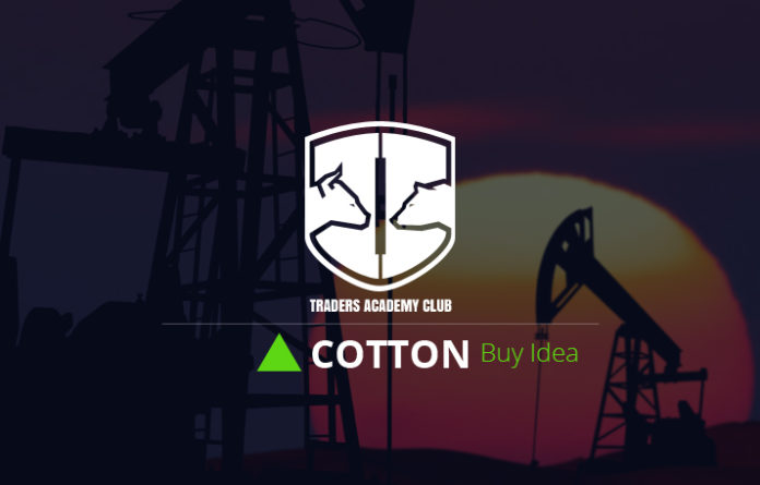 Cotton Forecast And Technical Analysis