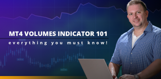 MT4 Volumes Indicator 101 - everything you must know!