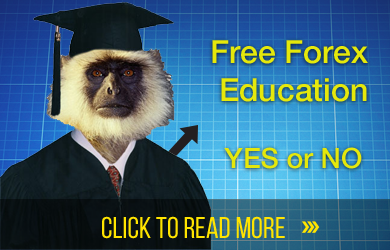 Free forex education videos